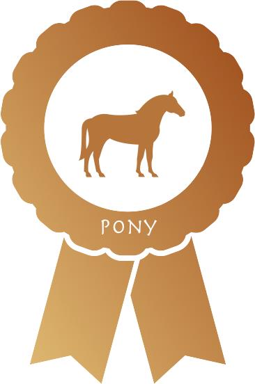 e-gaul Pony Bronze Wallbox Paket