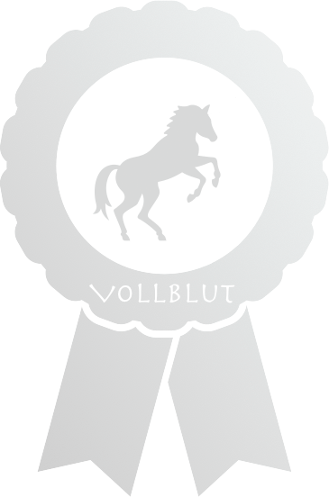 e-gaul Vollblut Silber Wallbox Paket
